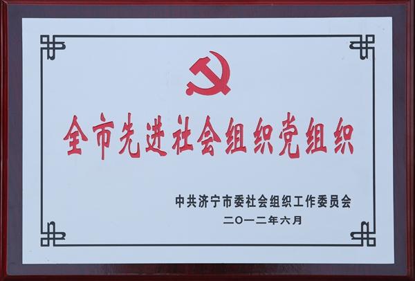 全市先进社会组织党组织